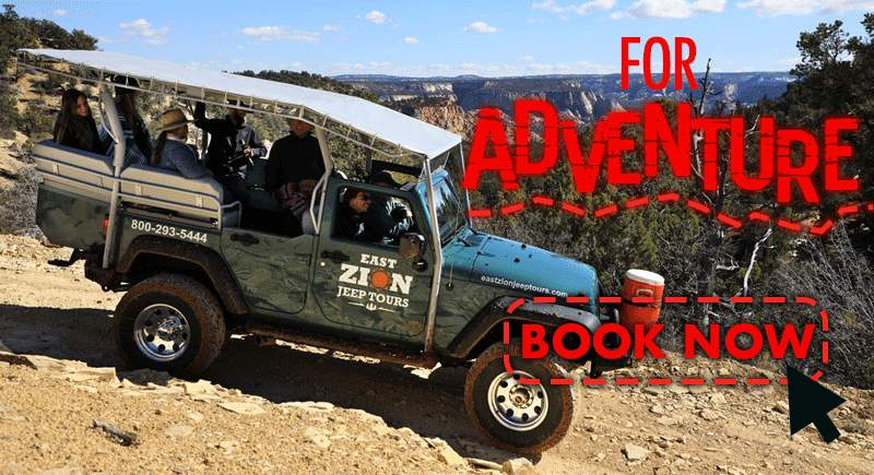 Zion Jeep Tour adventure